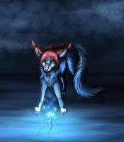 Iluminate by LiaBorderCollie