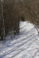 Ravine Path - Winter 4 by Stickfishies-Stock