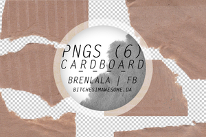Cardboard png by BitchesImAwesome
