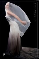 Flaying Dress 2 by DreamPhotographySyd