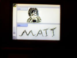 Nintendo DS Matt by Okitakehyate