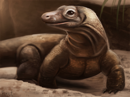 DAY 59. Photo Study - Komodo Dragon (35 Minutes) by Cryptid-Creations