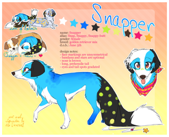 Snapper 2011 by BabyWolverines