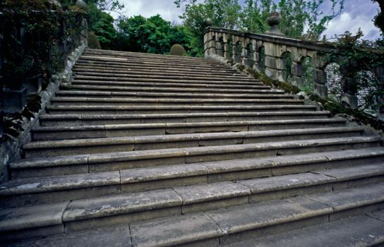 Haddon garden steps by Hard-to-handle