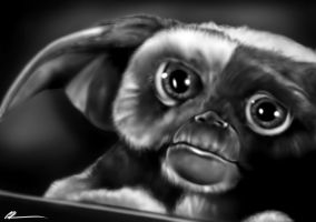 Gizmo by CSM-101