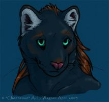 Black leopard by chenneoue