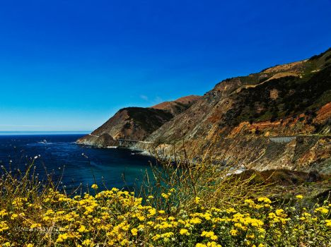 Big Sur! by 1shotaway