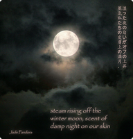 moon haiku by jade-pandora