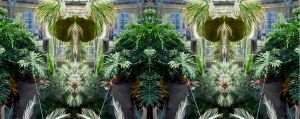The Hortis Palm House Upper Walkway Double Stereo by aegiandyad