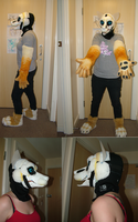 Daniel Fursuit WIP by sora1992