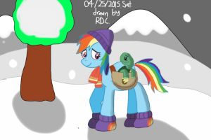 Rainbow Dash and Tank the Tortoise by Fester1124