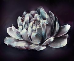 Chrystal flower by Advenadesign