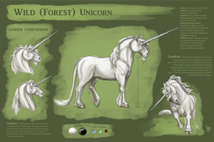 Wild (forest) Unicorn Reference Sheet by ThunderboltFire