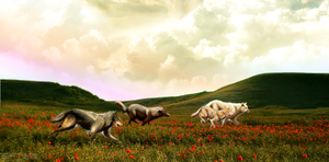 The Pack Home Page Header by xDoglate