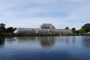 The Palm House by Puckmonkey