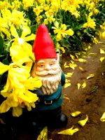 Yellow Falls Gnome by thedustyphoenix