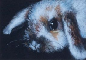 Night Watch 2x3 inch - PASTEL by AstridBruning