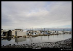 Point Defiance Marina by Krannichfeld