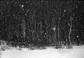 Falling Snow by hell-on-a-stick