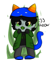 :33 Meow by Chiiboo