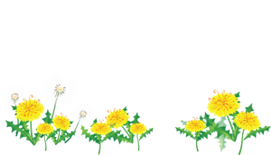 [Res] Flower Border by HanaBell1