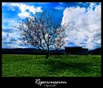 repercussion by sefenite