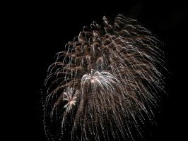 Fireworks-1374 2010 by PeaceFrogArt