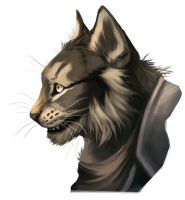 Wolfrott-commission- by RogueLiger