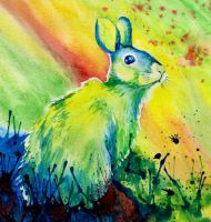 Rabbit Abstract by Alina-Kurbiel