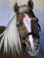 Horse Painting by mfreed