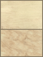 [free] paper texture by Asralores-adoptables