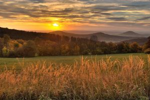 Sunset in Habichtswald by sarpeco