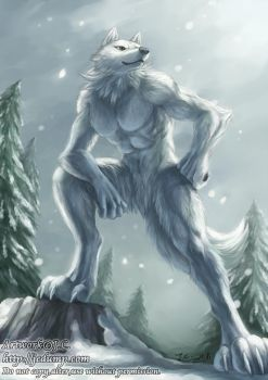 King of winter by J-C