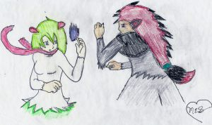 Who's Gonna Win~ Request from Kirlia424 by CutePoochyena261