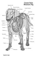 Dog Anatomy the Bones by COOKEcakes