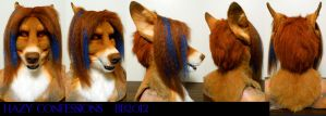 Hazy Dingo Head Turnaround by Magpieb0nes