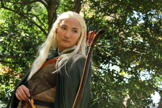LoTR: Legolas 3 by Stealthos-Aurion