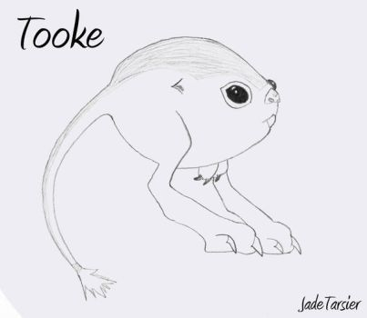 Star Wars: Tooke by JadeTarsier