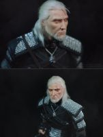 Geralt of Rivia (finish) by Zheltkevich