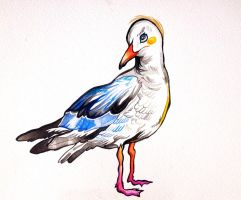 Chelsea the Seagull by ClaraBacou