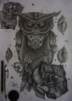 Owl and his locked heart by DuilioFrancis