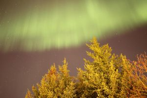 Northern lights by spartout