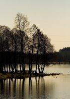 Lake Wdzydze 02 by remigiuszScout