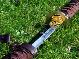 Wakizashi on Grass by iganokage