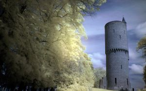 Rapunzel's tower by stijn