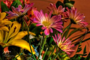 HDR Flowers by Nebey