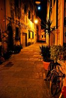 streets of isola d'elba by tolgagonulluleroglu