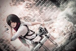 Attack on Titan - The Will to Fight by Ranmaru-Mori