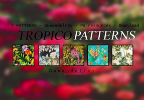 Tropico Patterns by Queendelrey