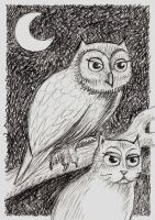 I am the owl by offermoord